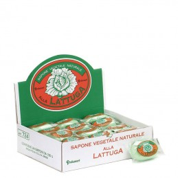 Vegetable Soap Lettuce with...